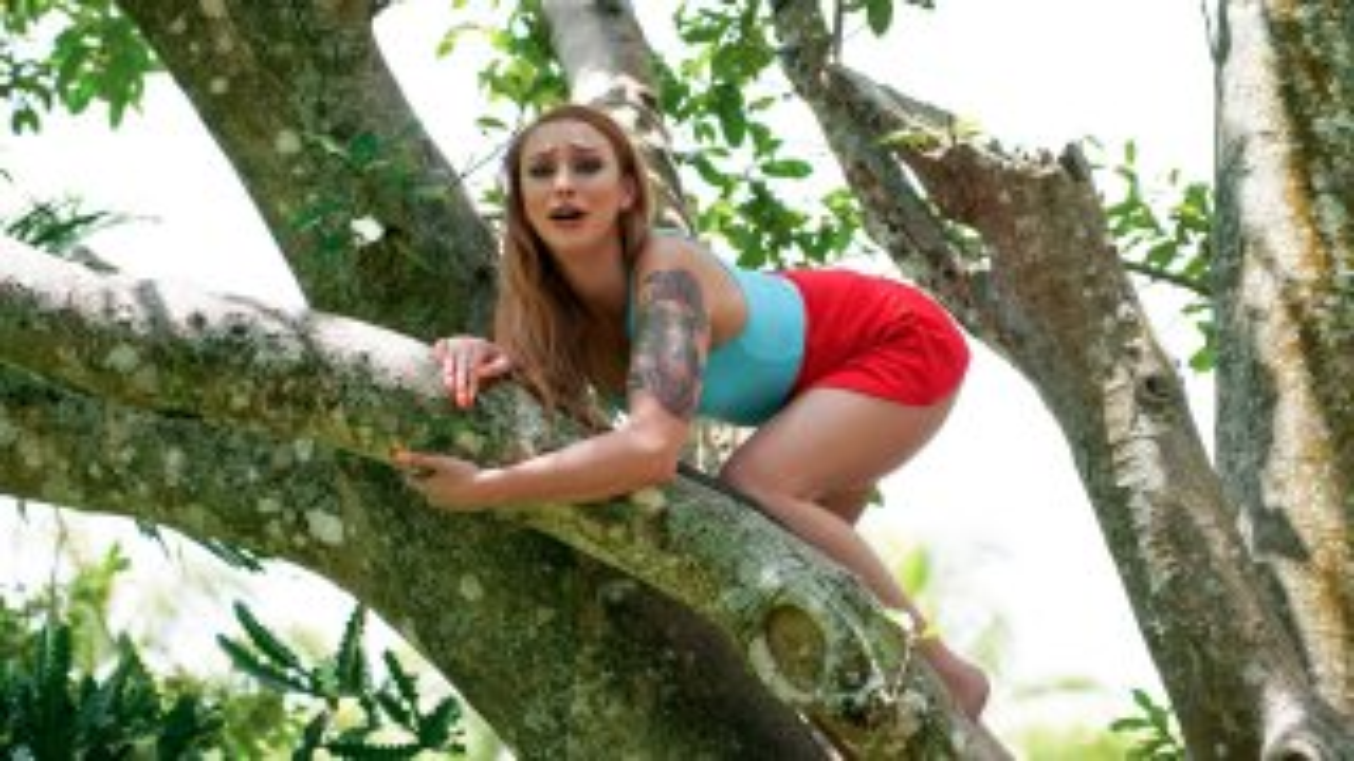 Girl On Treetop - Stranded Teens